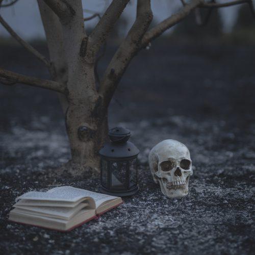 3 dicas de títulos para começar a ler terror nacional
