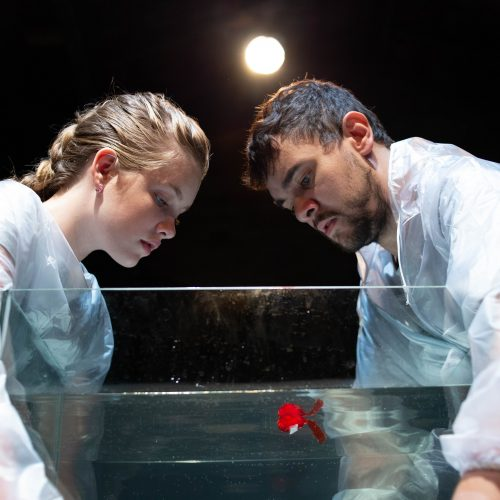 Luccas Papp cria espetáculo inspirado na pandemia global